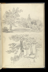 Miscellaneous pencil drawings, mainly studies of trees. 43